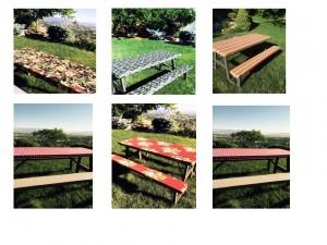 picnic pics